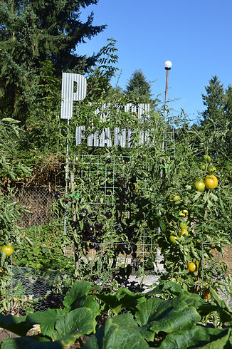 FranMo-PPatch.JPG