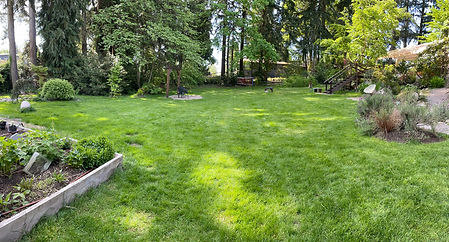 Massive-Lawn-FranMo.jpg