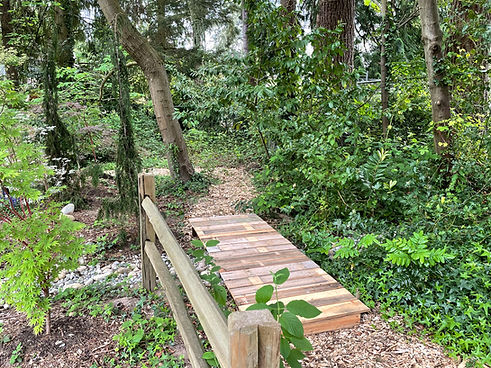 Lil-Squatch-Trail.jpg