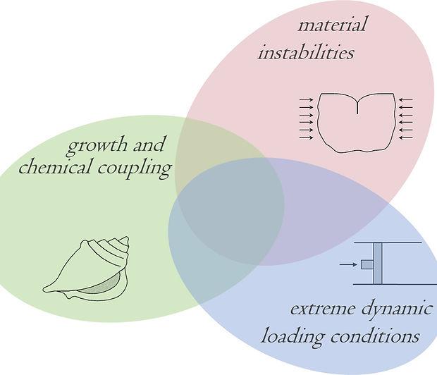 zen Diagram.jpg