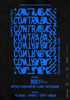 Contrabass Poster
