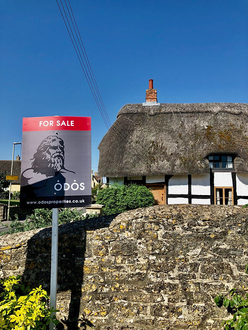 FOR SALE THATCHED.jpg