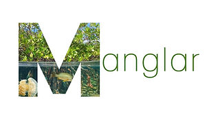 Logo Manglar.jpg