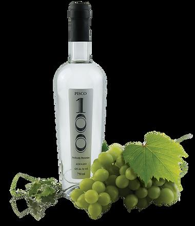 botella + uvas final.png