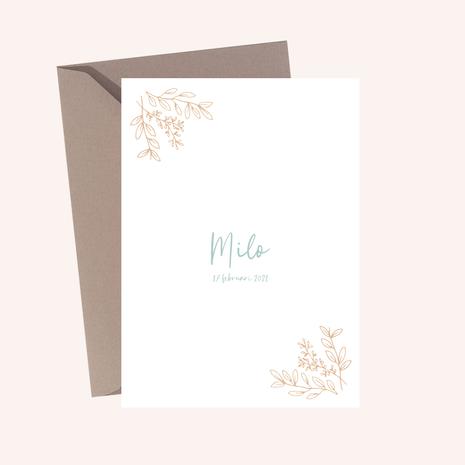 Geboortekaartje Milo