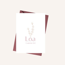 Geboortekaartje Loa