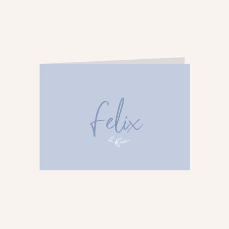 Geboortekaartje Felix