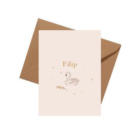 Geboortekaartje Filip