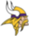 mn_vikings_large.png
