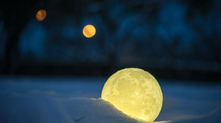 熱賣中最新3D打印 Moonlight