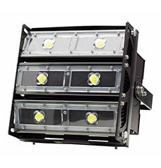 Sunburst Flood Light
