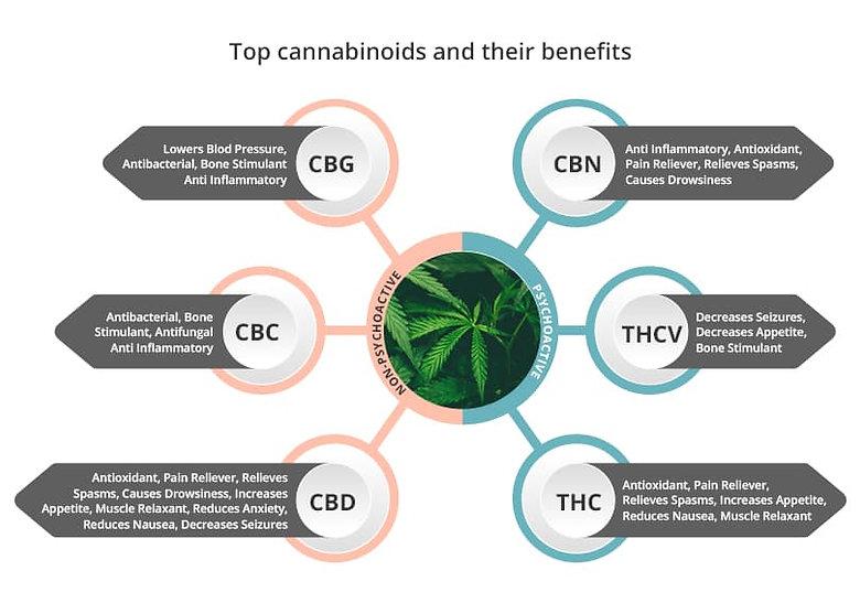 Cannabinoids and Their benefits CBG, CBD, CBC, CBN, THCV, THC.jpg