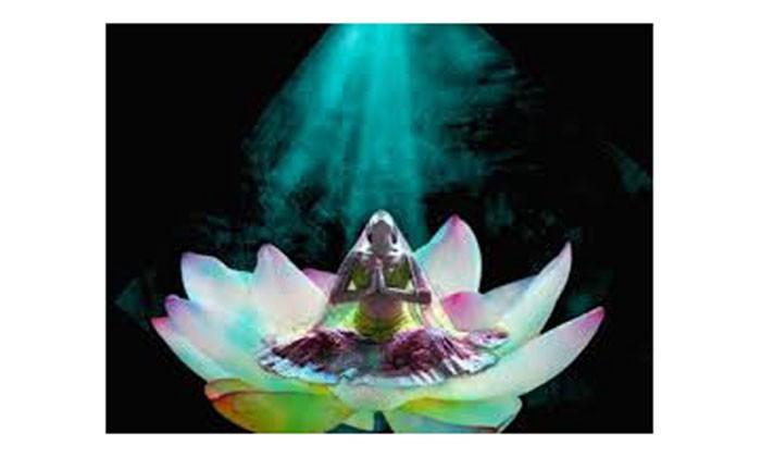 lotus, CBD, sacred feminine, M3 Life, Goddess, Divine