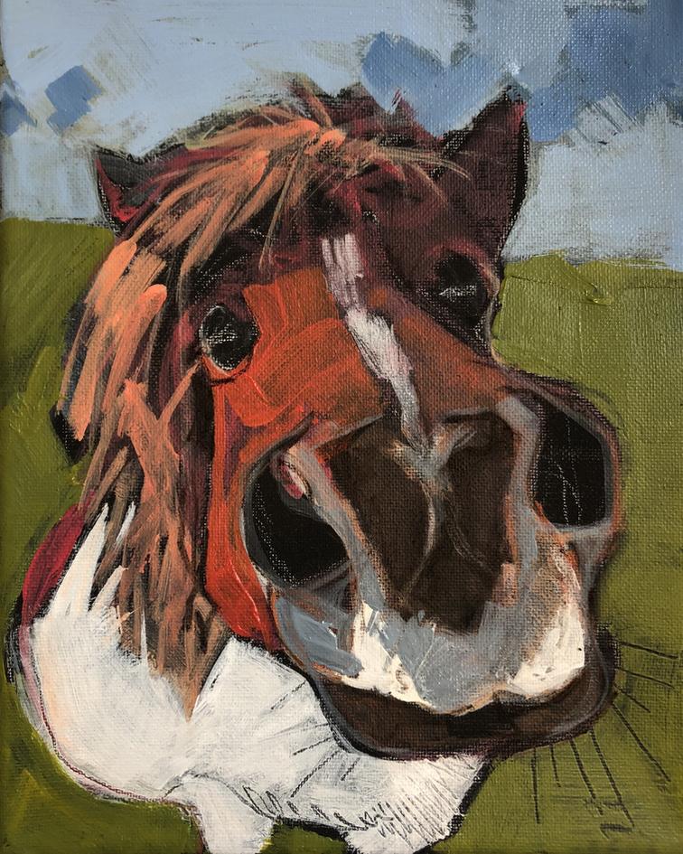 Ponyface