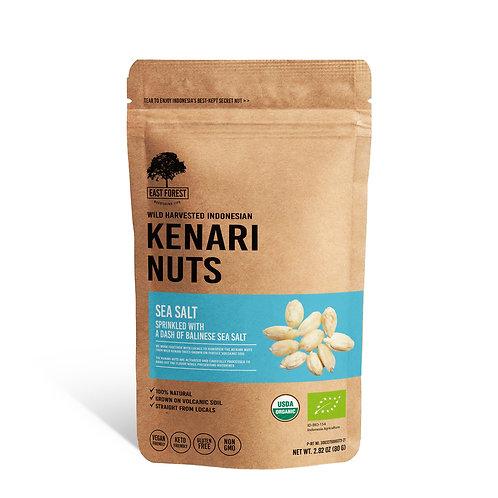East Forest Kenari Nuts - Sea Salt - 2 Pack