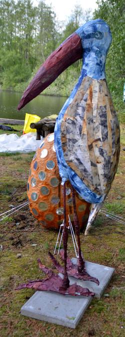 Een Roodbek-blauwborst-platpoot-marabou.