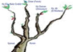 cinar3-1.jpg