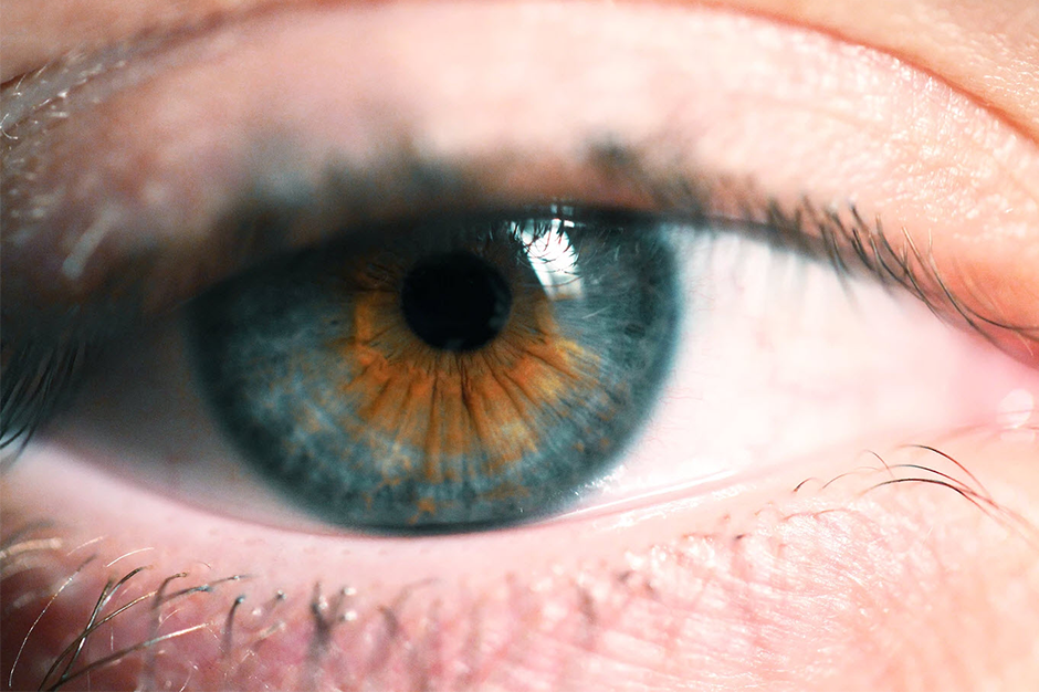 extreme close-up of blue and brown eye