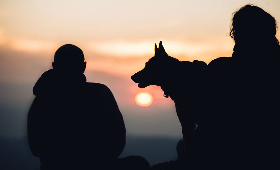 silhouette portrait of couple and dog at sunset