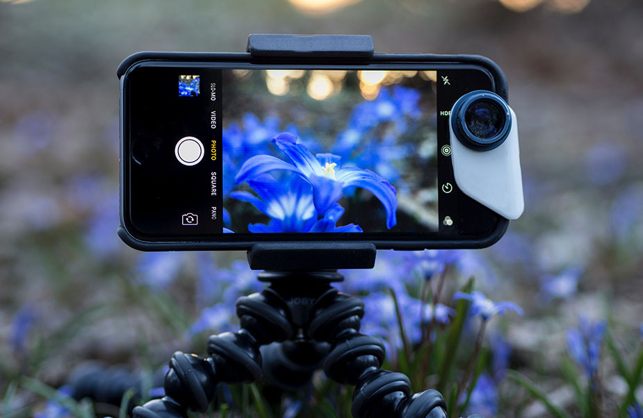 macro nature smartphone photography tripod