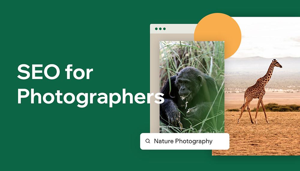 SEO for photographers: what you need to know