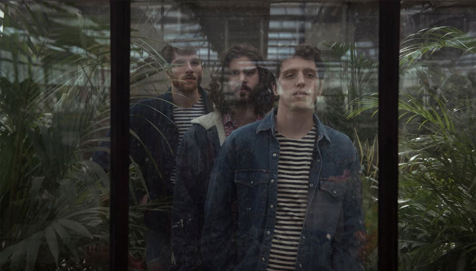 three young man standing behind a glass among plants by Alice Consonni