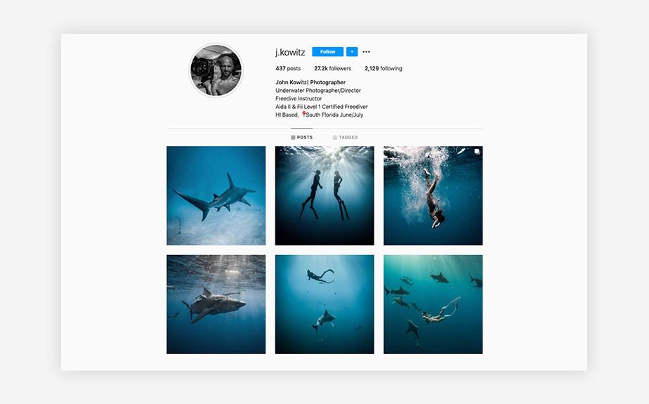 John Kowitz underwater photography and marine wildlife