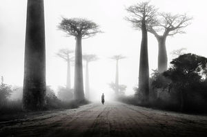 25 Beautiful Examples Of Black And White Photography