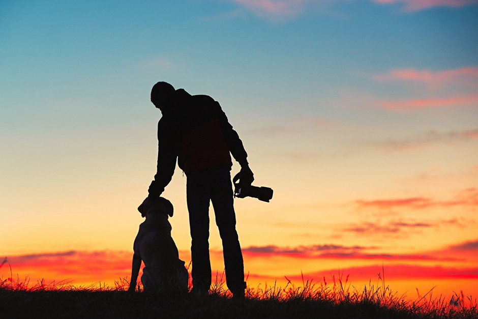 silhouette of dog and man at sunset