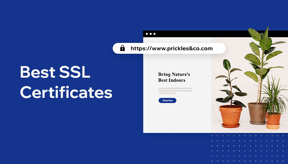 10 Best SSL Certificate Providers to Buy From in 2020
