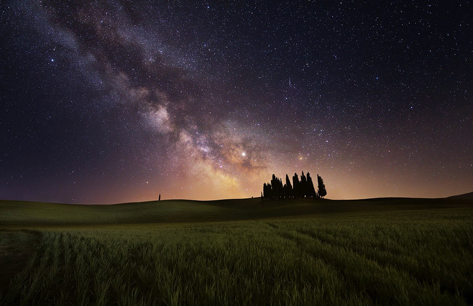 milky way astrophotography over field and trees
