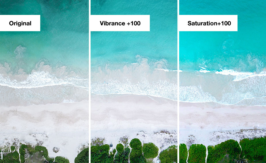 difference vibrance vs saturation in photography example