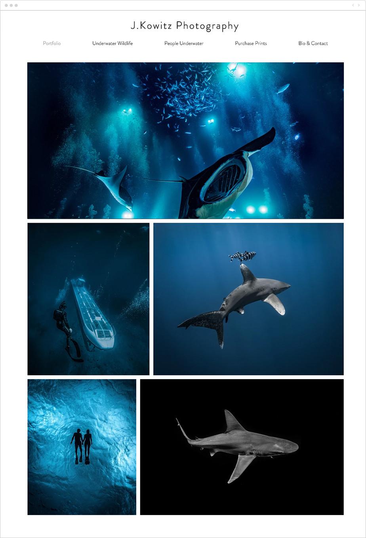 online underwater photography portfolio