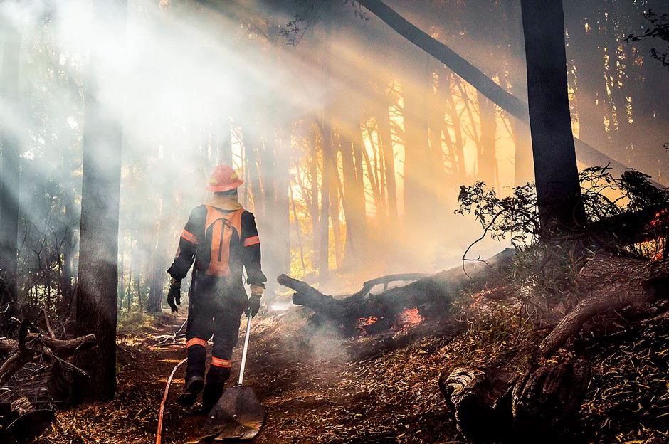 photojournalism firefighter walking towards forest fire amidst the smoke
