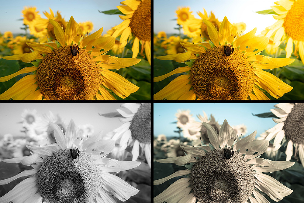 how to edit photos with lightroom presets