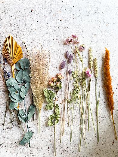 Blumen Luger | Grein | Österreich | Blumenladen | Gärtnerei | Dried Flowers