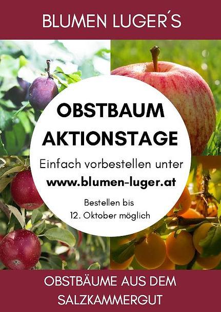 Obstbaum Aktion 2021.JPG