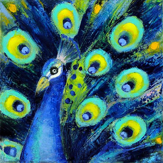 Peacock - Oil on Canvas              20 x 20cm  framed       £165