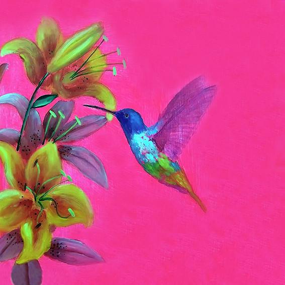 Pink Hummingbird - oil on canvas framed £195