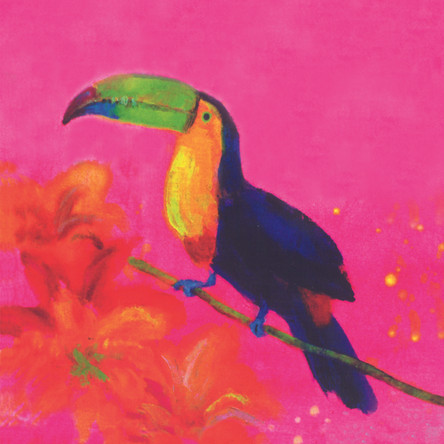 Sunset Toucan SOLD
