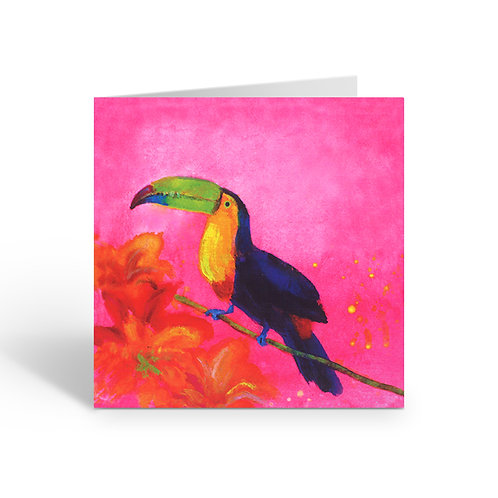 WHOLESALE PACK OF 6 Sunset Toucan - B086