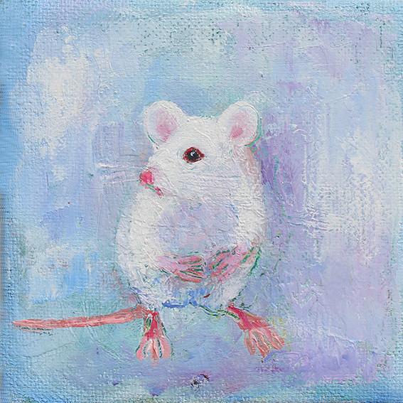 Little White Mouse - Oil on Canvas          15 x 15cm     framed       £45