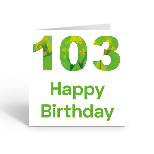 WHOLESALE PACK OF 6 Numbers 103 - X763
