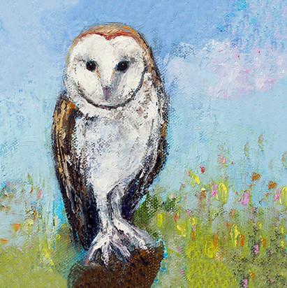White Barn Owl SOLD