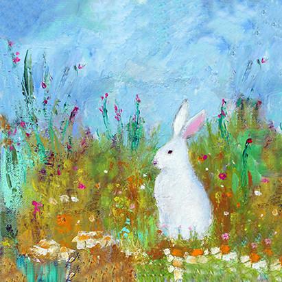 Summer Meadow -  Oil on Canvas              20 x 20cm    framed    £75