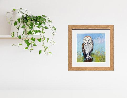 White Barn Owl - print