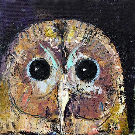 Little Owl - SOLD
