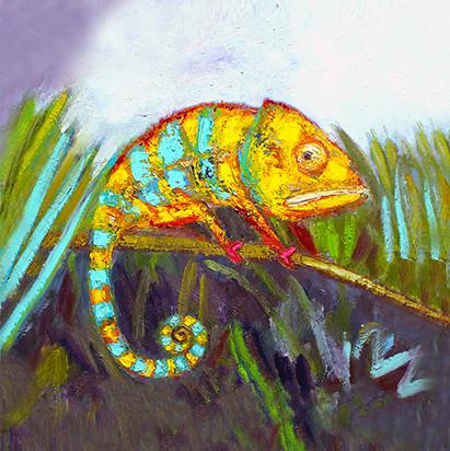 Chameleon SOLD