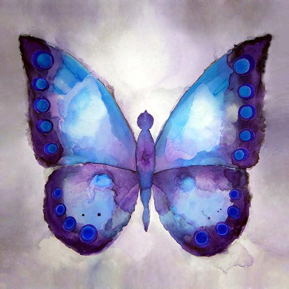 Blue Butterfly - Acrylic on Canvas       80 x 80cm    framed     £375