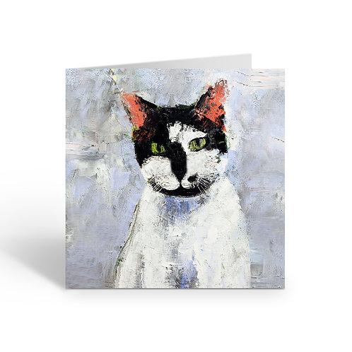 WHOLESALE PACK OF 6 Black & White Cat - C078